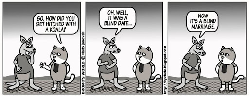 Мачорот Бромо!